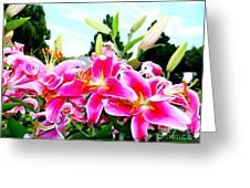 Stargazer Lilies #1 Greeting Card
