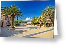 Stari Grad On Hvar Island Palm Waterfront Greeting Card