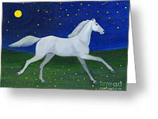 Starry Night In August Greeting Card