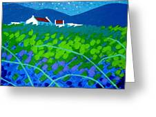 Starry Night In Wicklow Greeting Card by John  Nolan