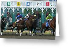 Starting Gate Greeting Card