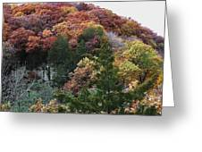 Starved Rock Greeting Card