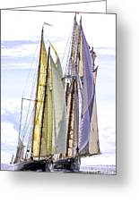 Stately Mariners Greeting Card