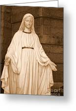 Statue Of Mary At Sacred Heart In Tampa Greeting Card