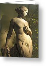 Statuesque Greeting Card by Jessica Jenney