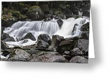 Stave Falls Greeting Card