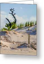 Stay Off Dunes Greeting Card