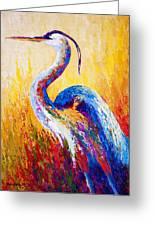 Steady Gaze - Great Blue Heron Greeting Card