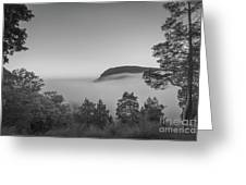 Steam Valley Bw Greeting Card