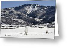 Steamboat - Colorado Greeting Card by Brendan Reals