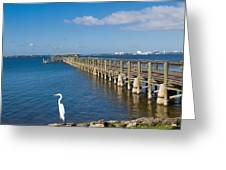 Steamboat Landing Ot Melbourne Beach In Florida  Greeting Card
