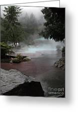 Steamy Spledor Greeting Card