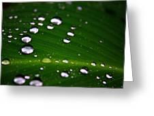 Steel Rain Greeting Card