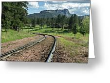 Steel Tracks In The Black Hills Greeting Card
