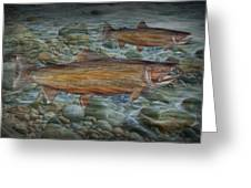 Steelhead Trout Fall Migration Greeting Card
