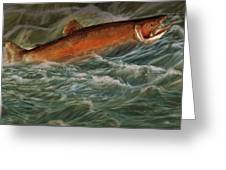 Steelhead Trout Fish No.143 Greeting Card