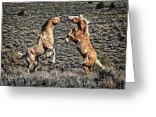 Steens Drama Greeting Card