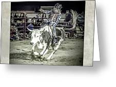 Steer Buck Out _c Greeting Card