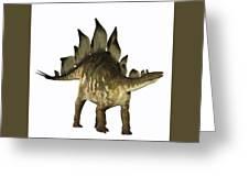 Stegosaurus Profile Greeting Card