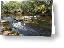 Steinhatchee Falls Greeting Card