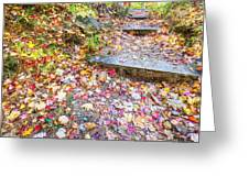 Step Into Fall Greeting Card