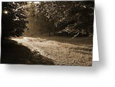 Step Out Of The Shadow Greeting Card
