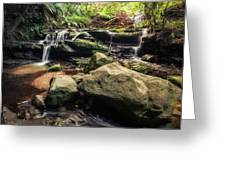 Stepping Cascade - Leura, Blue Mountains, Australia. Greeting Card