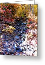 Stepping Stones At Autumn Forest Greeting Card