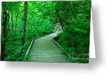 Steps Into Paradise Greeting Card