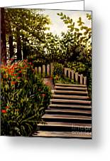 Steps Of Monte Rio Greeting Card