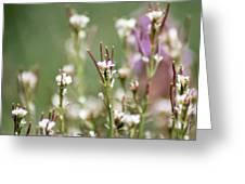 Stick Flower Greeting Card