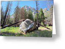 Sticks And Rock Greeting Card