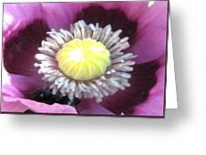 Stigma Greeting Card