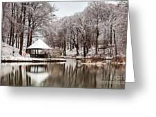 Still Lake In Winter Greeting Card