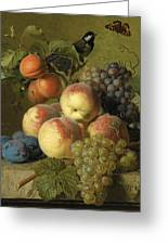 Still Life Of Peaches  Grapes And Plums On A Stone Ledge With A Bird And Butterfly Greeting Card