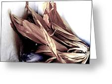 Still Life With Husks Greeting Card