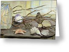 Still Life With Seashells And Pine Cones Greeting Card
