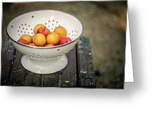 Still Life With Yellow Plums  Greeting Card