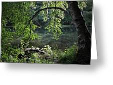 Still Water Greeting Card