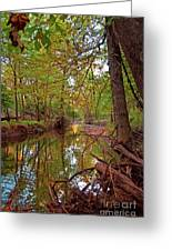 Still Waters In The Evening Greeting Card