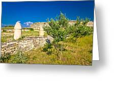 Stone Artefacts Of Asseria Ancient Town Greeting Card