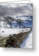 Stone Fence, Weardale, County Durham Greeting Card