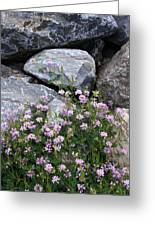 Stone Flowers Pink Greeting Card