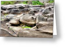 Stone Frog Greeting Card