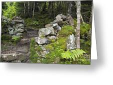 Stone Gate - Edmands Path - White Mountains New Hampshire  Greeting Card