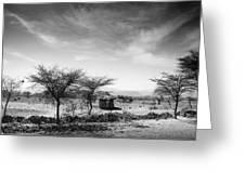 Stone Hut Set In Grassland Plains Greeting Card by David DuChemin