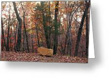Stone Leaves And Trees Greeting Card