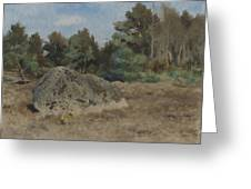 Stone Of The Field Greeting Card