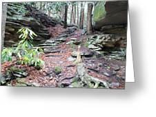 Stone Path Greeting Card