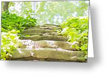 Stone Stairs Greeting Card by Stefano Piccini